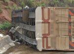 Carreta carregada com 90 novilhas que ia de MT para SP pela Br 364 tomba na  Serra da Petrovina
