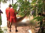 Rondonópolis - Polícia Civil prende ex-marido e o irmão acusados de matar professora após descobrir novo relacionamento