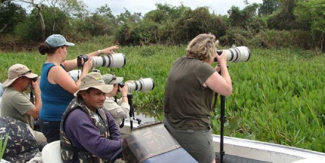 Turismo pode salvar a onça-pintada do Pantanal mato-grossense